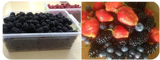Які ягоди заморожують