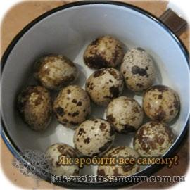 Як правильно варити яйця